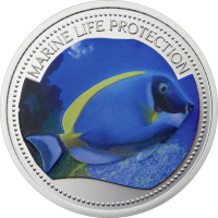 Surgeonfish – Copper-Nickel