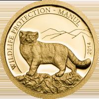 Manul Gold