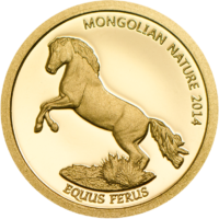 Mongolian Nature 2014 – Horse Au