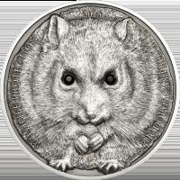 Campbell's Hamster Ag – 2015