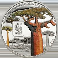 WWF Baobab