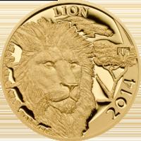Lion – Big V