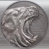 Sea Lion North American Predators