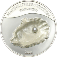Shell with Pearl – Pearldiving