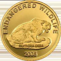 Mongolian Snow Leopard Gold