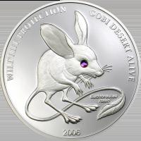 Long-eared Jerboa – silver