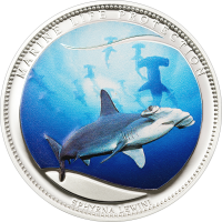 Scalloped Hammerhead – Copper silverplated