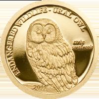 Ural Owl Gold