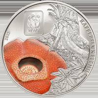 WWF Rafflesia