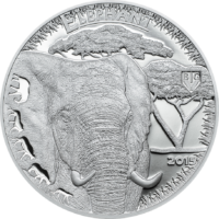 Elephant – Big V