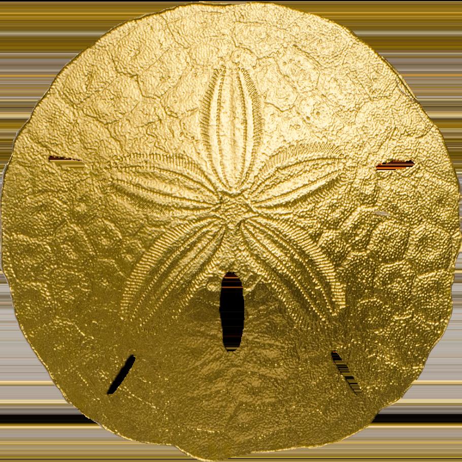 Golden Sand Dollar Cit Coin Invest Ag