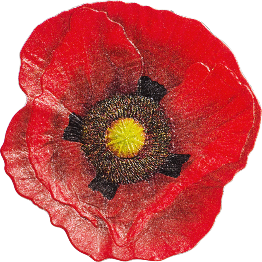 Remembrance Poppy Cit Coin Invest Ag