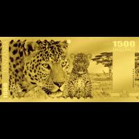 Leopard – Tanzania