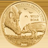 Wild Boar Au