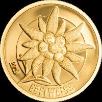 Golden Edelweiss